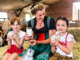 Reflexões sobre o nível de consumo de leite dos brasileiros
