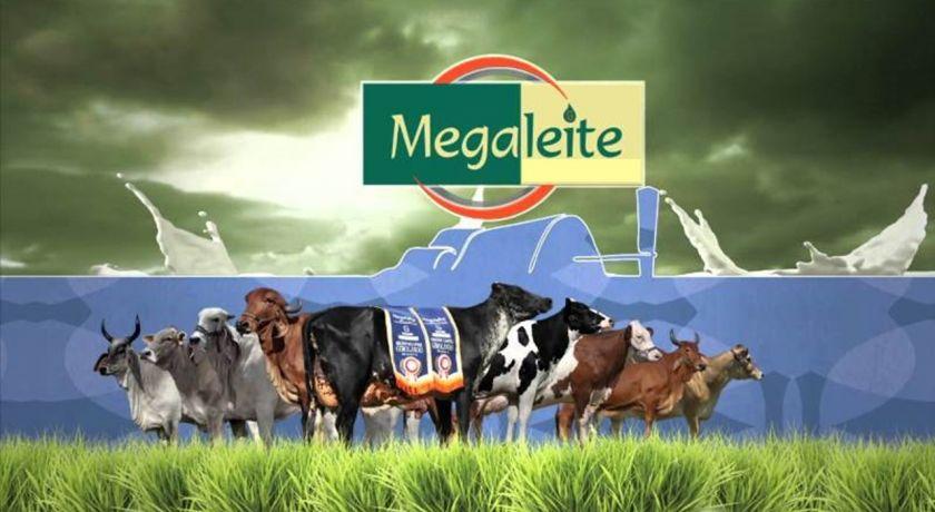 Aberto oficialmente o Circuito Megaleite 2018/2019