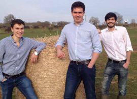 Embalagem de fardos comestível desenvolvida para reduzir o desperdício da pecuária