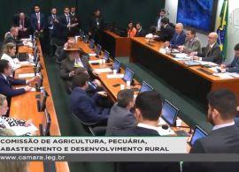 Comissão de Agricultura debate impactos da abertura do mercado lácteo no Brasil