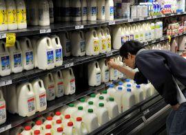 Preços do leite ao produtor são os maiores da série histórica no mês de janeiro