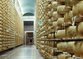 Mercado global de queijos bate recorde em 2019