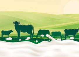 """Cadeia de lácteos cria """"livro de cabeceira"""" do setor"""