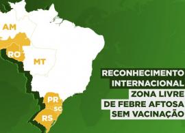 Seis estados brasileiros recebem reconhecimento como zonas livres de febre aftosa sem vacinação