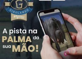 Inscrições abertas para a 1ª Copa Virtual Girolando