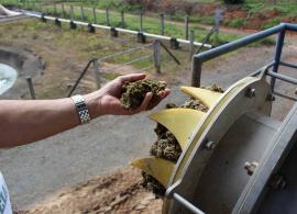 Pesquisa comprova eficiência econômica de biogás na pecuária de leite