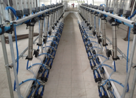 Isenção de IPI para equipamentos usados na produção de leite é aprovada na Comissão de Agricultura