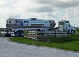 Preços globais de lácteos aumentam pela sexta vez consecutiva